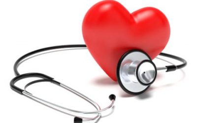 Cá mòi giúp cải thiện và ngăn ngừa bệnh tim mạch