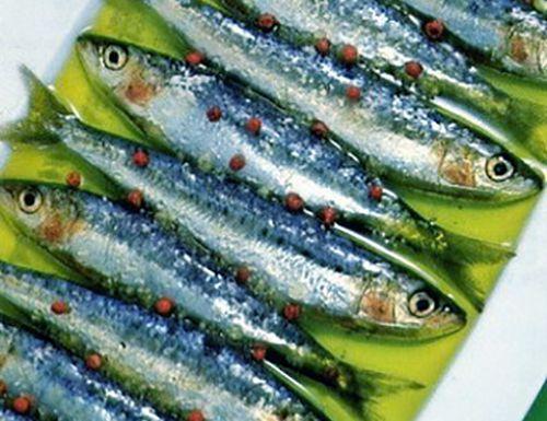 Hướng dẫn chọn cá mòi và cách làm món cá mòi kho ngon đúng vị
