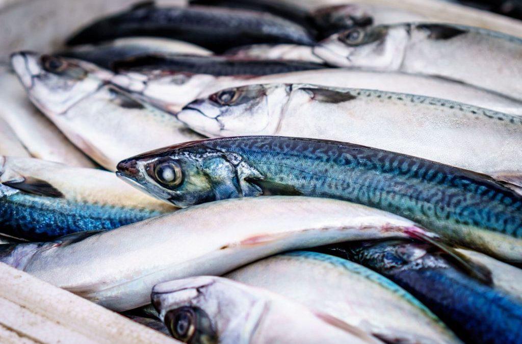 Giá trị dinh dưỡng từ cá mòi kho giúp tăng chiều cao