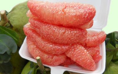 8 Thực phẩm thanh lọc cơ thể tự nhiên